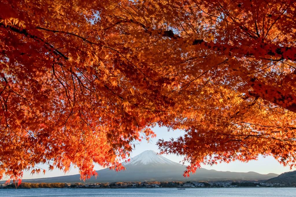 Yuga kurita Mount Fuji Kawaguchiko Photowalk 2014 20140117-_KE297972